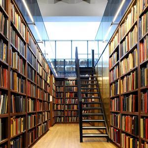 Библиотеки Тисуля